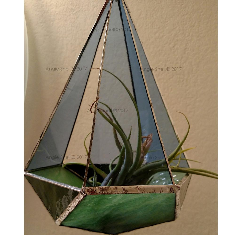 plant-holder.png