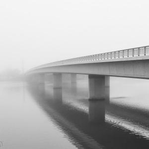 So foggy! The commute of gloom