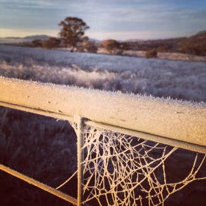 So frozen! Training in minus six.