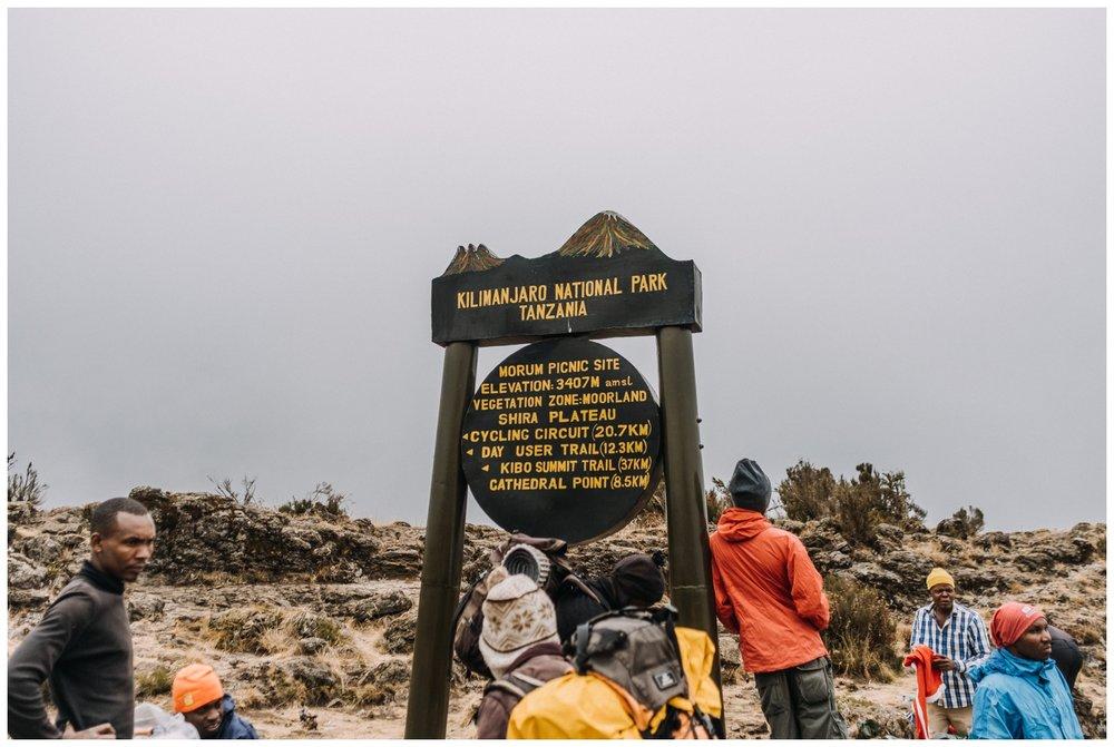 Kilimanjaro_0005.jpg