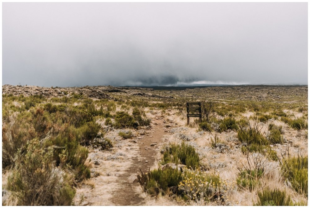 Kilimanjaro_0007.jpg