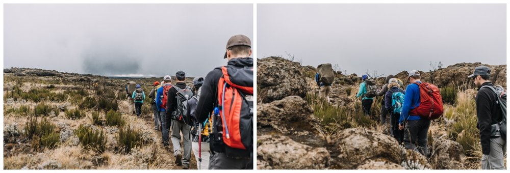 Kilimanjaro_0009.jpg