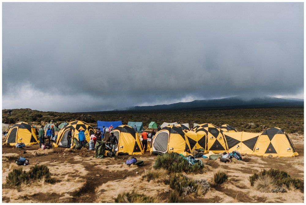 Kilimanjaro_0018.jpg