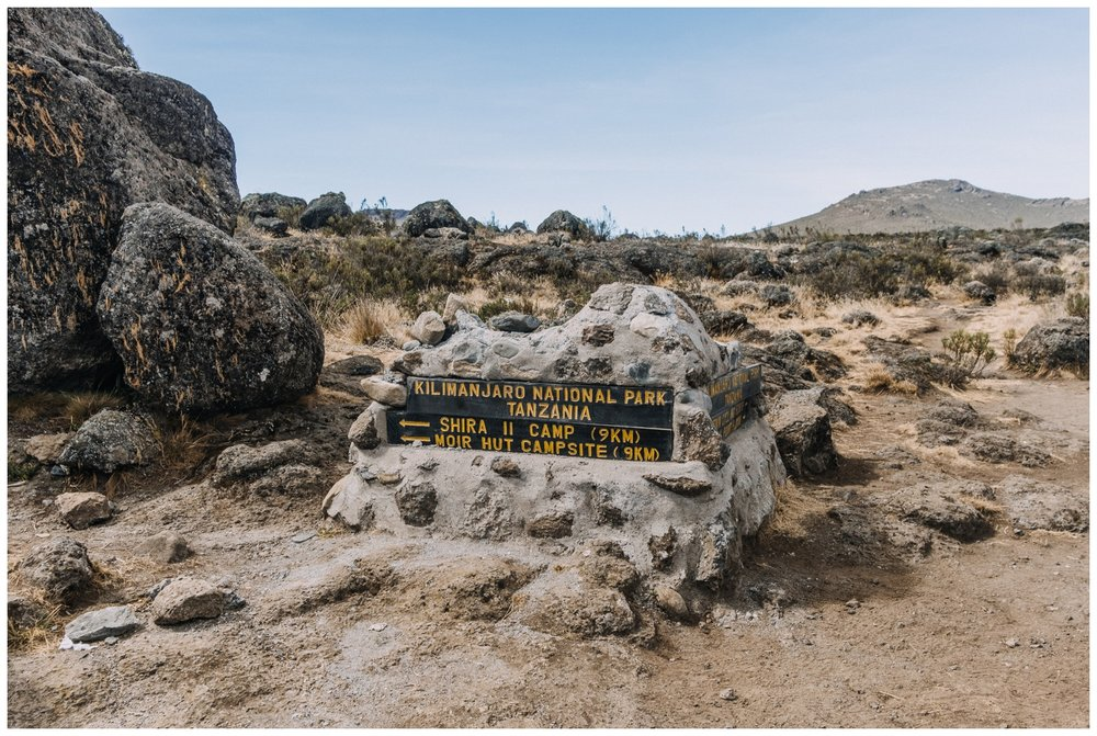 Kilimanjaro_0022.jpg