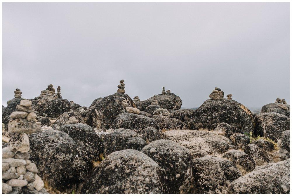 Kilimanjaro_0031.jpg