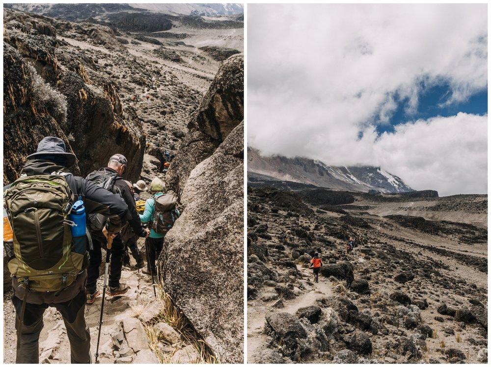 Kilimanjaro_0042.jpg
