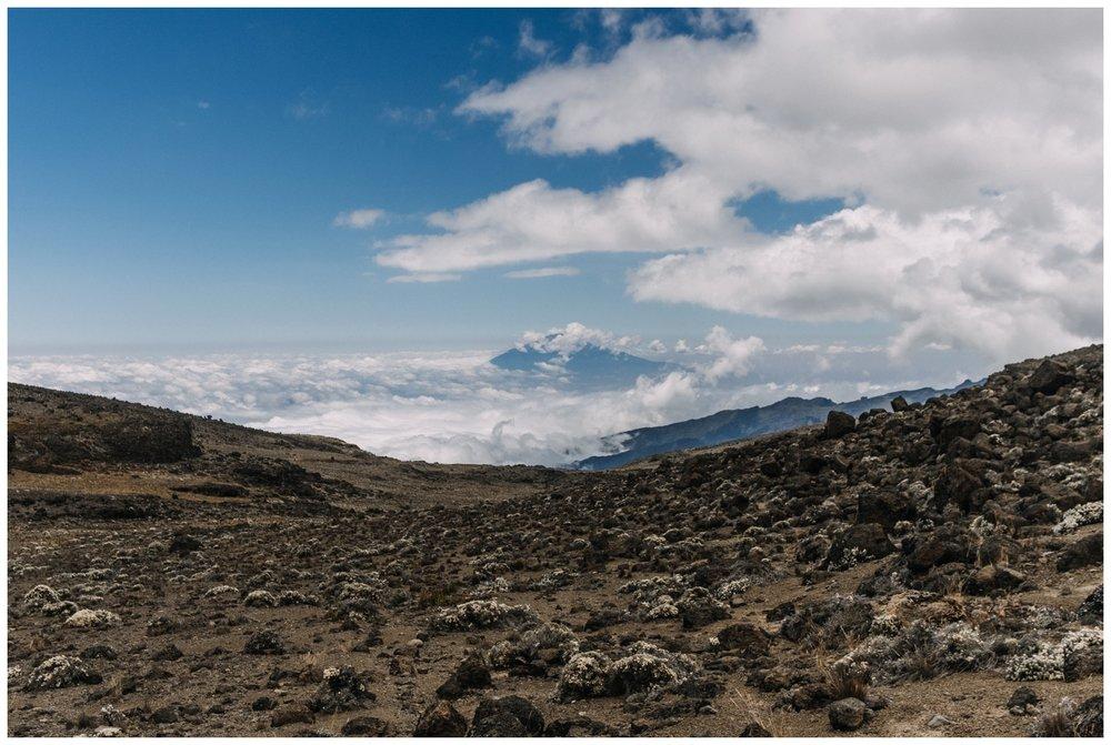 Kilimanjaro_0043.jpg