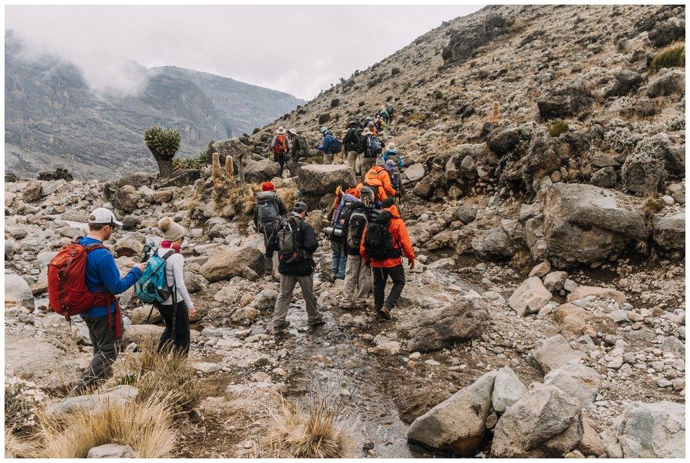 Kilimanjaro_0052.jpg