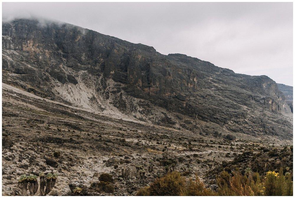 Kilimanjaro_0055.jpg