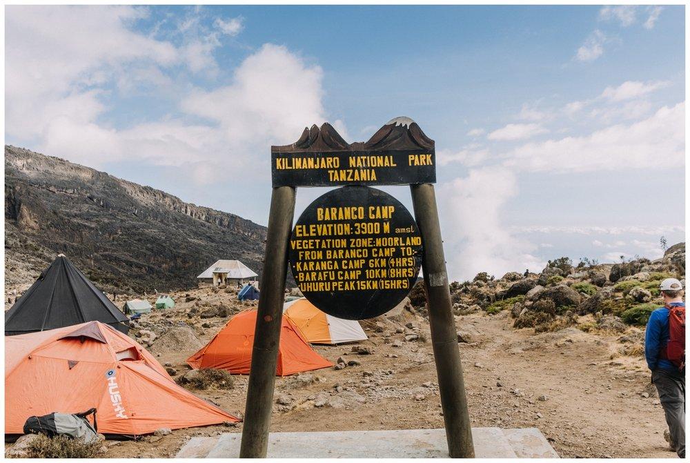 Kilimanjaro_0056.jpg