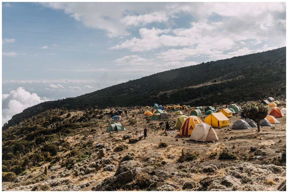 Kilimanjaro_0060.jpg