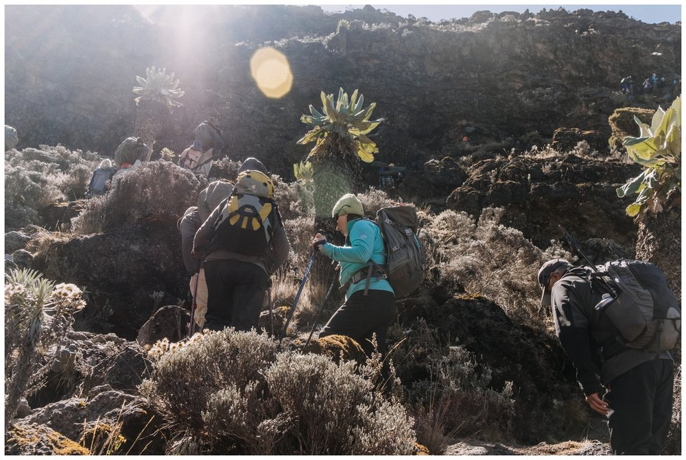 Kilimanjaro_0072.jpg