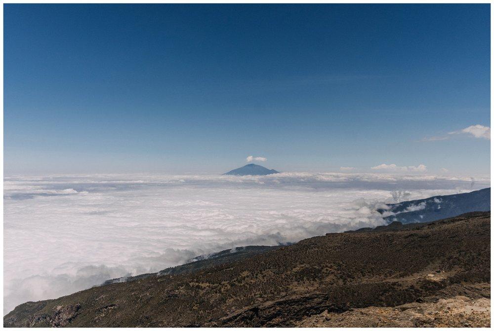 Kilimanjaro_0084.jpg