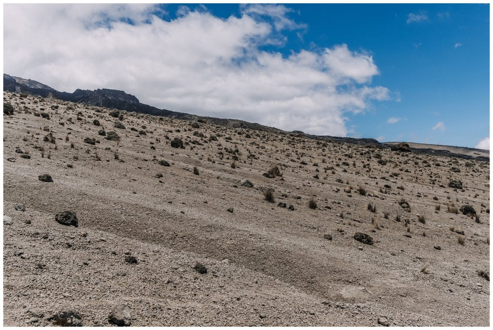 Kilimanjaro_0088.jpg
