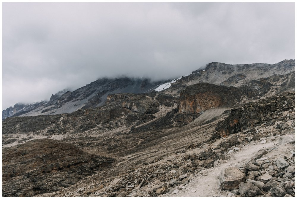 Kilimanjaro_0104.jpg