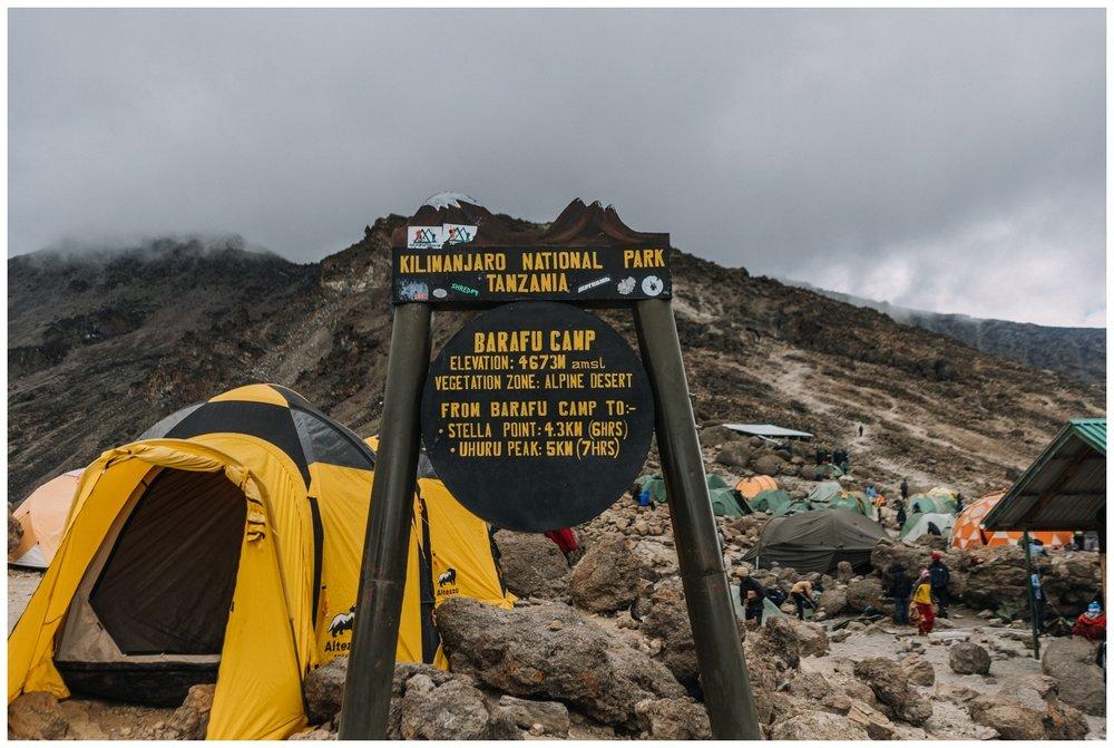Kilimanjaro_0110.jpg