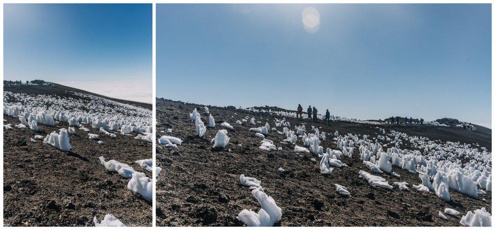 Kilimanjaro_0115.jpg