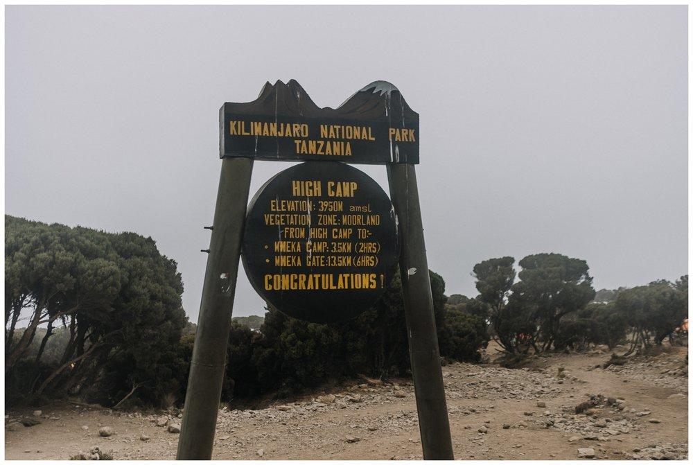 Kilimanjaro_0126.jpg