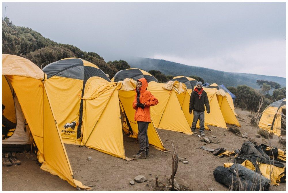 Kilimanjaro_0128.jpg