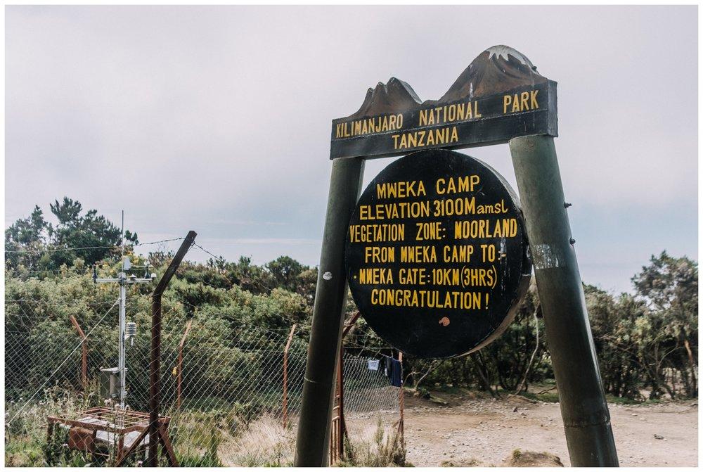 Kilimanjaro_0135.jpg