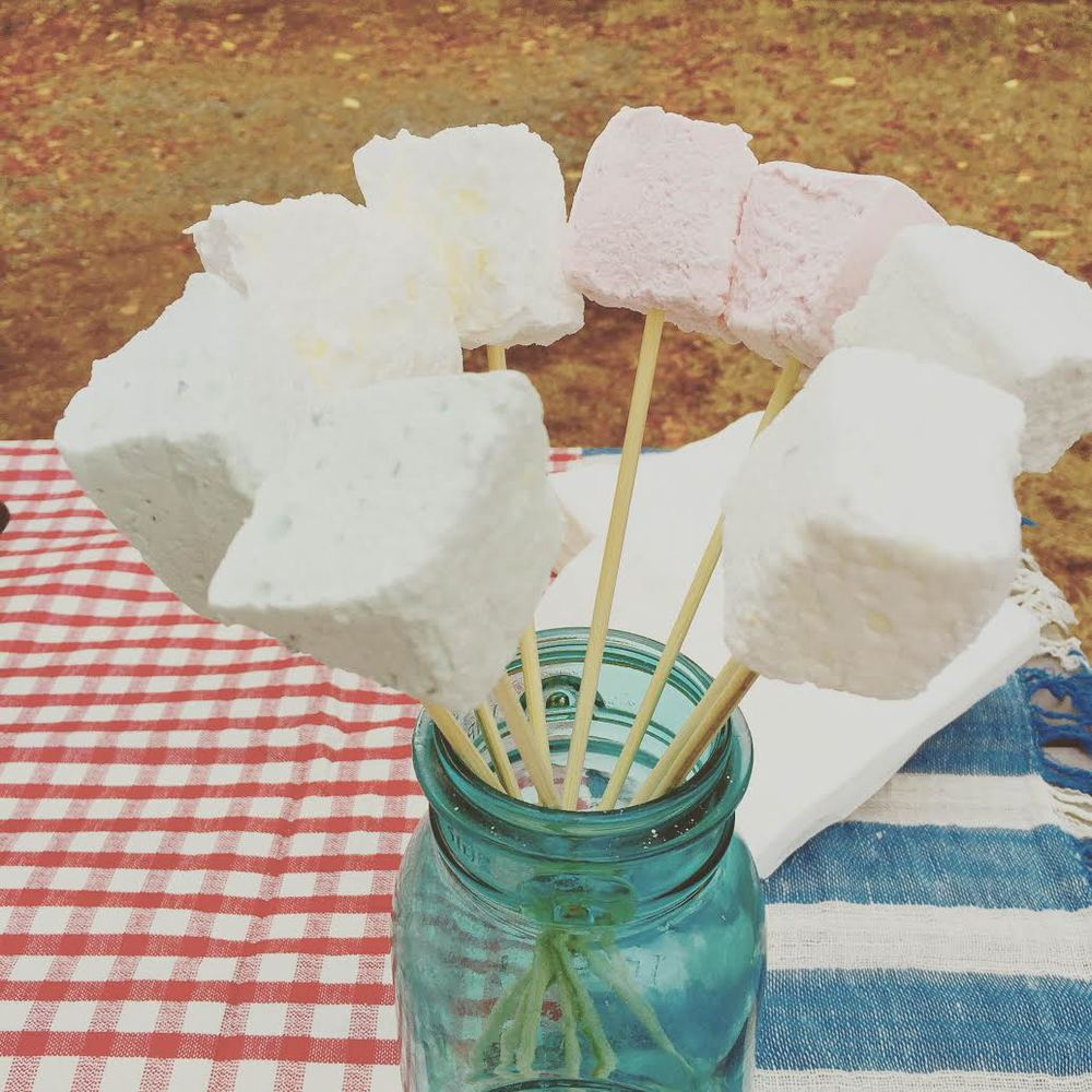 Set up a special picnic!