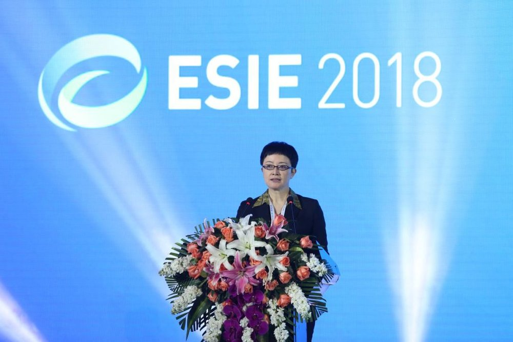 National Energy Administration Vice Director Liu Yafang Delivers the Opening Speech