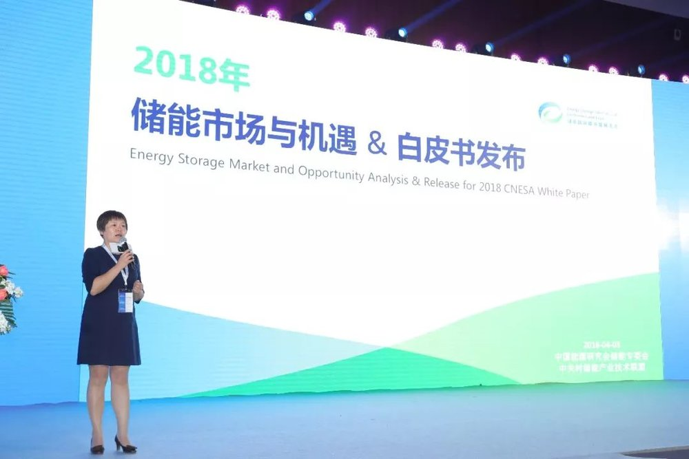 China Energy Storage Alliance Chief Supervisor Zhang Jing Announces the Release of the  Energy Storage Industry White Paper 2018