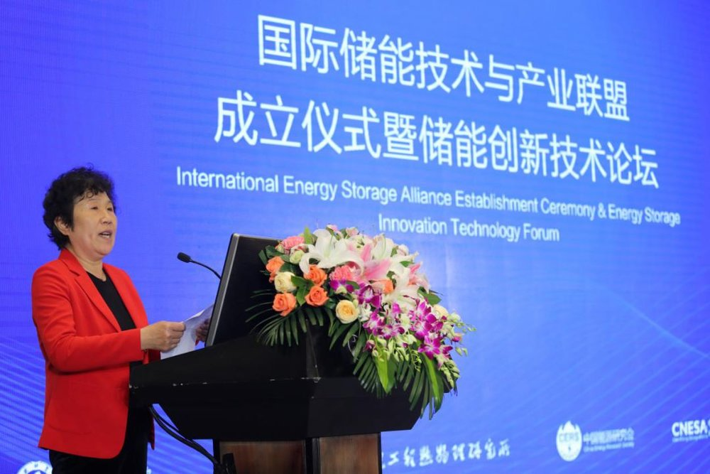 China Energy Research Society General Secretary  Zheng Yuping Delivers a Speech