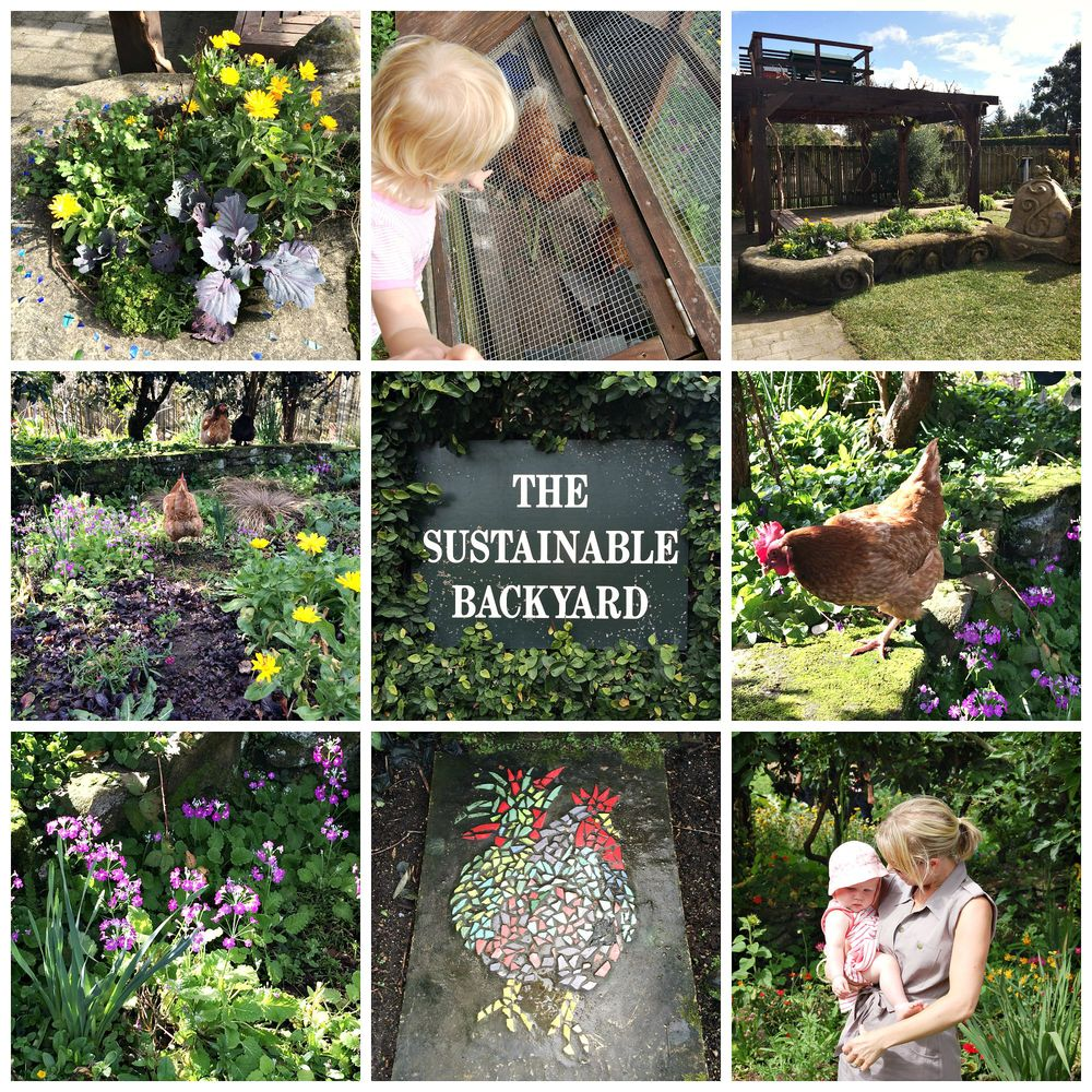 Bees, chickens, vegetables, compost and more - a brilliant example of sustainable principles