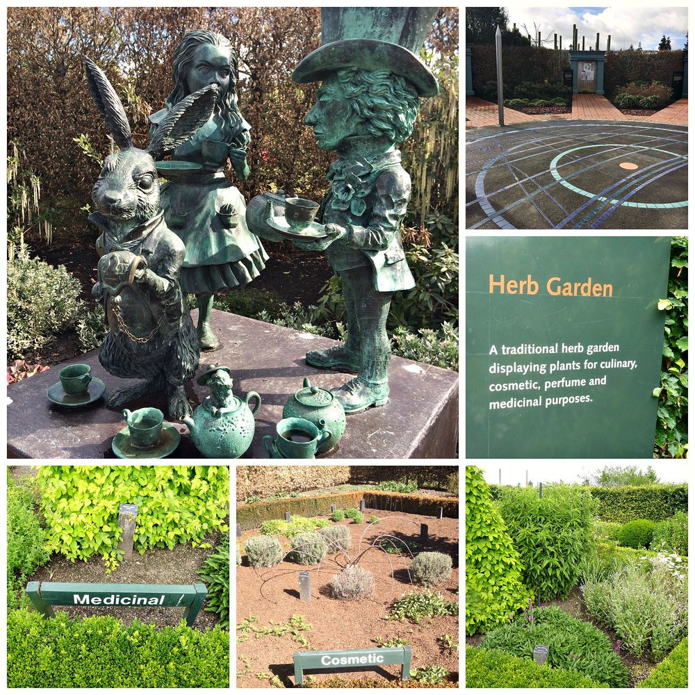 Off the central sundial circle, the herb garden is split into 4 plots - culinary, medicinal, cosmetic and perfume