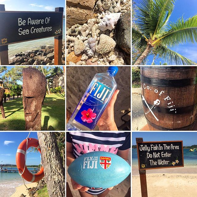 So many lovely Fiji impressions to carry home in our hearts - a real visual treat here!☀️🌺🏝 @tourismfiji @fijiforfamilies @shangrila.fiji #fiji #fijitime #travelmontage #fijiwater #beachlife🌴 #rumcofiji #travellingpotterfamily #inpursuitoflovelyness
