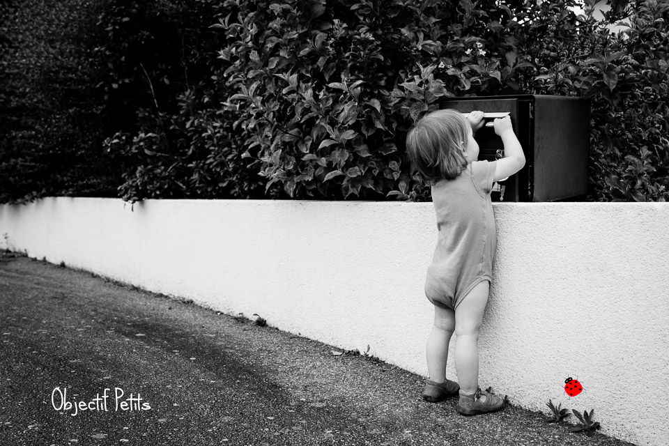 Objectif Petits Photographe BREST