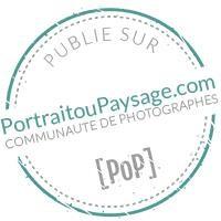Objectif Petits sur Portrait ou Paysage | Photographe de bébés, enfants et familles à Brest