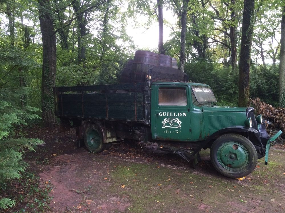 Guillon delivery truck slowly becoming a part of the forrest