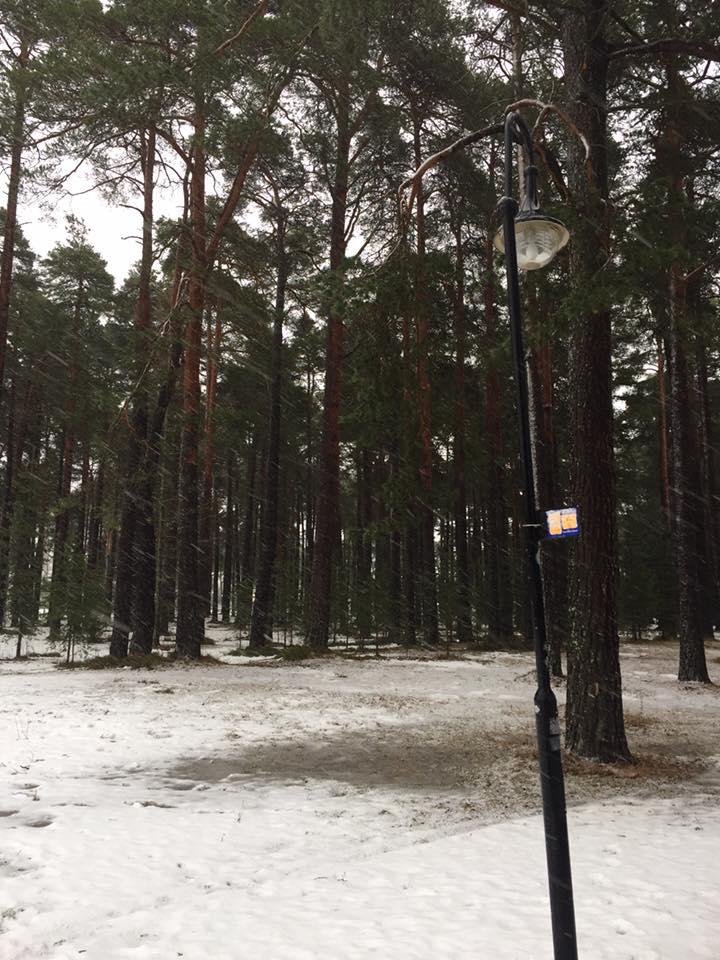 Gävle 13 - Narnia.jpg