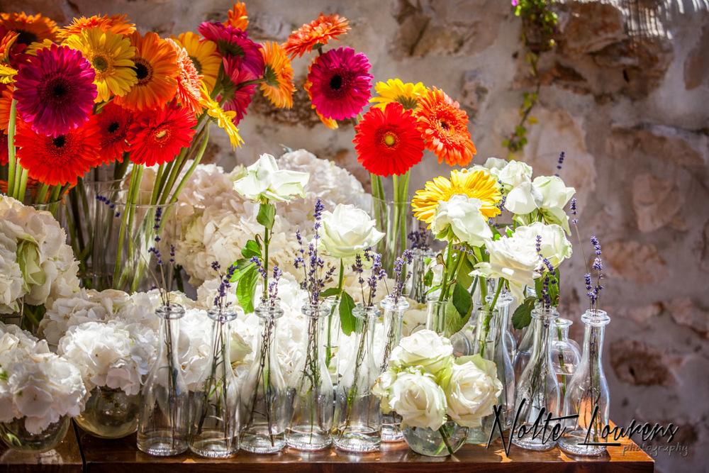 flowers-26.jpg