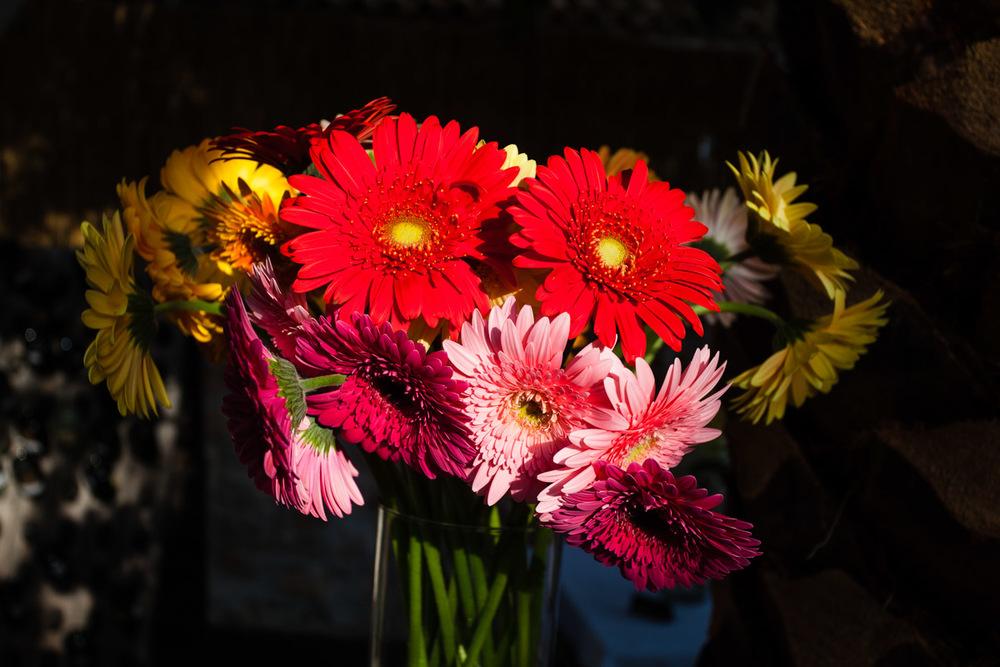 flowers-45.jpg