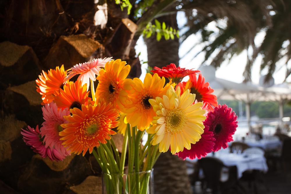 flowers-46.jpg