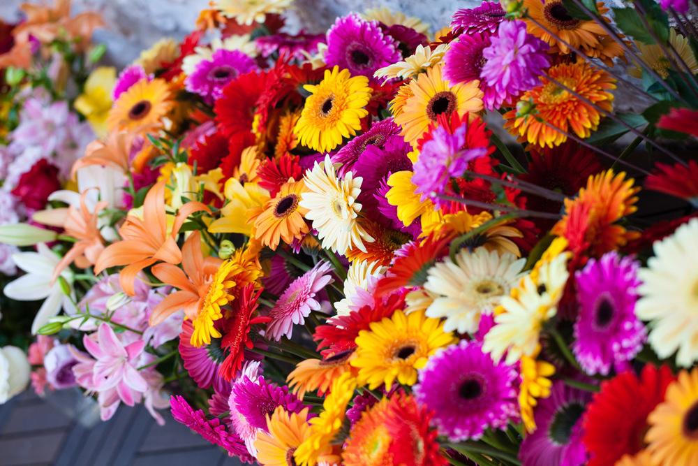 flowers-60.jpg