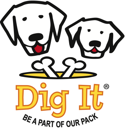 Digit current logo.png