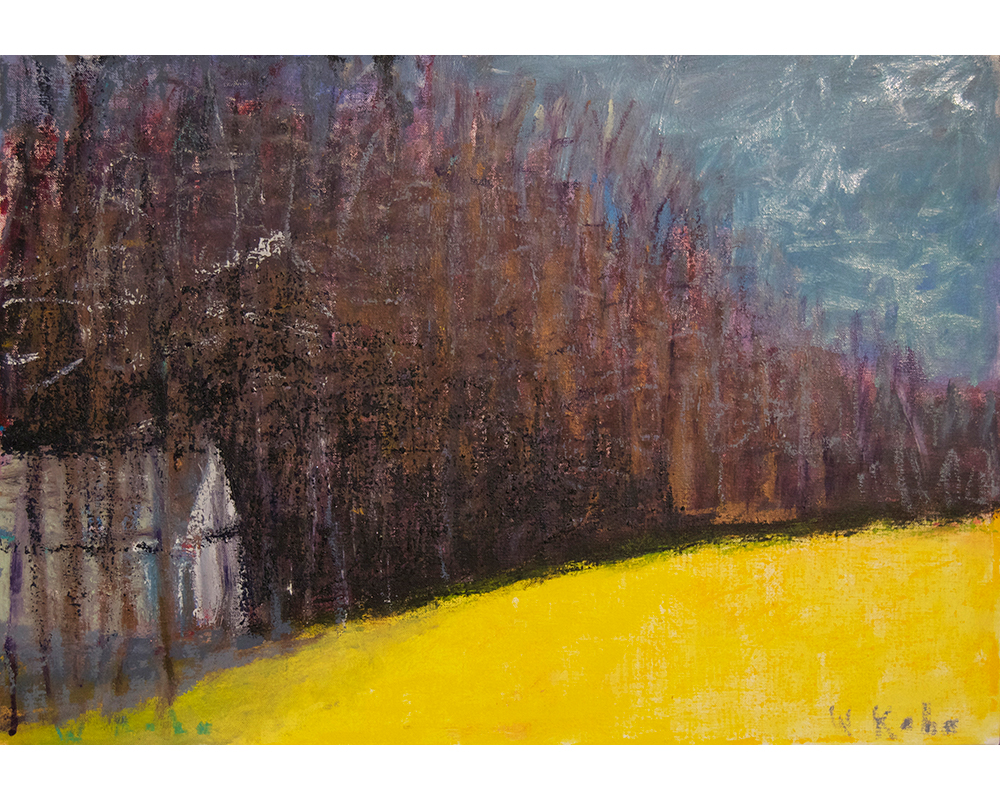 White Cabin Among Black Trees,  2014 Oil on canvas 18 x 26 inches