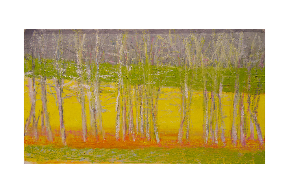 Tree Row III,  2013 Oil on canvas 18 x 32 inches