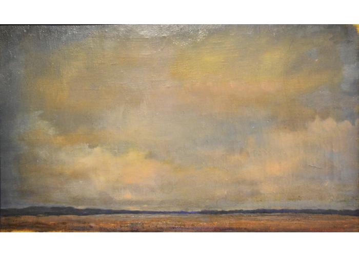 FLOODLANDS OF KOSBROMA RIVER (2006)