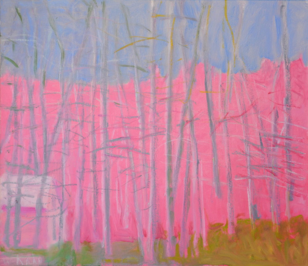 Low Lying Bar n, 2008  Oil on canvas  28 x 32 inches