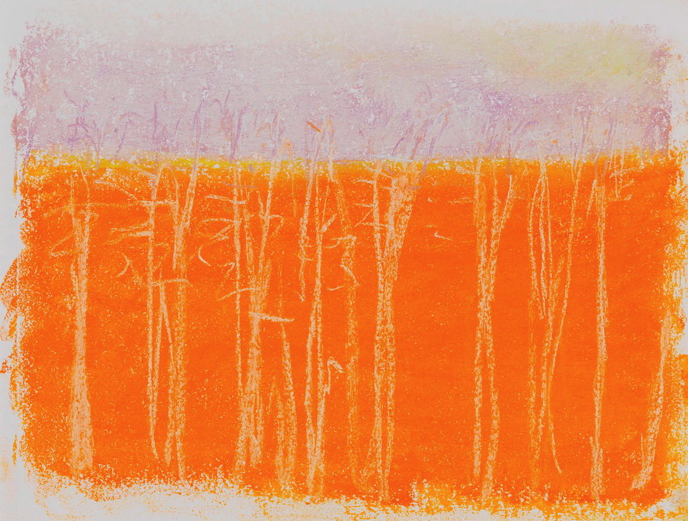 Against Red/Orange , 2015  Pastel on paper  9 x 12 inches