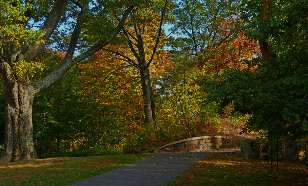 """Autumn in the Emerald Necklace"" Eric Hoar, 1st Place, 2013"