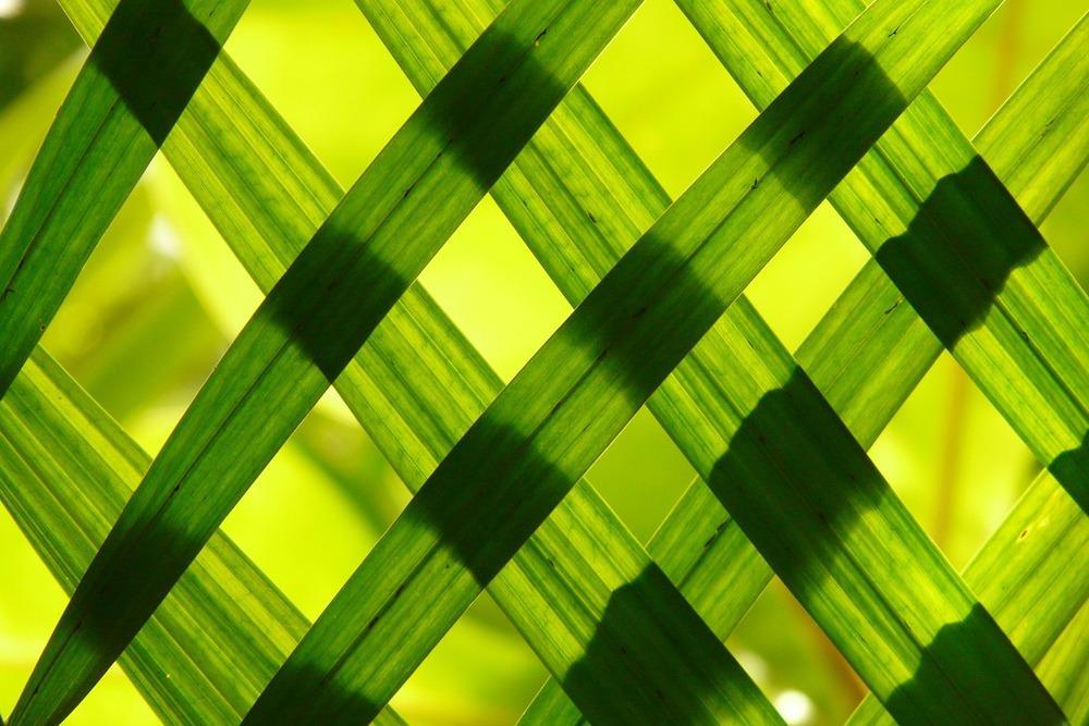 Green ENC