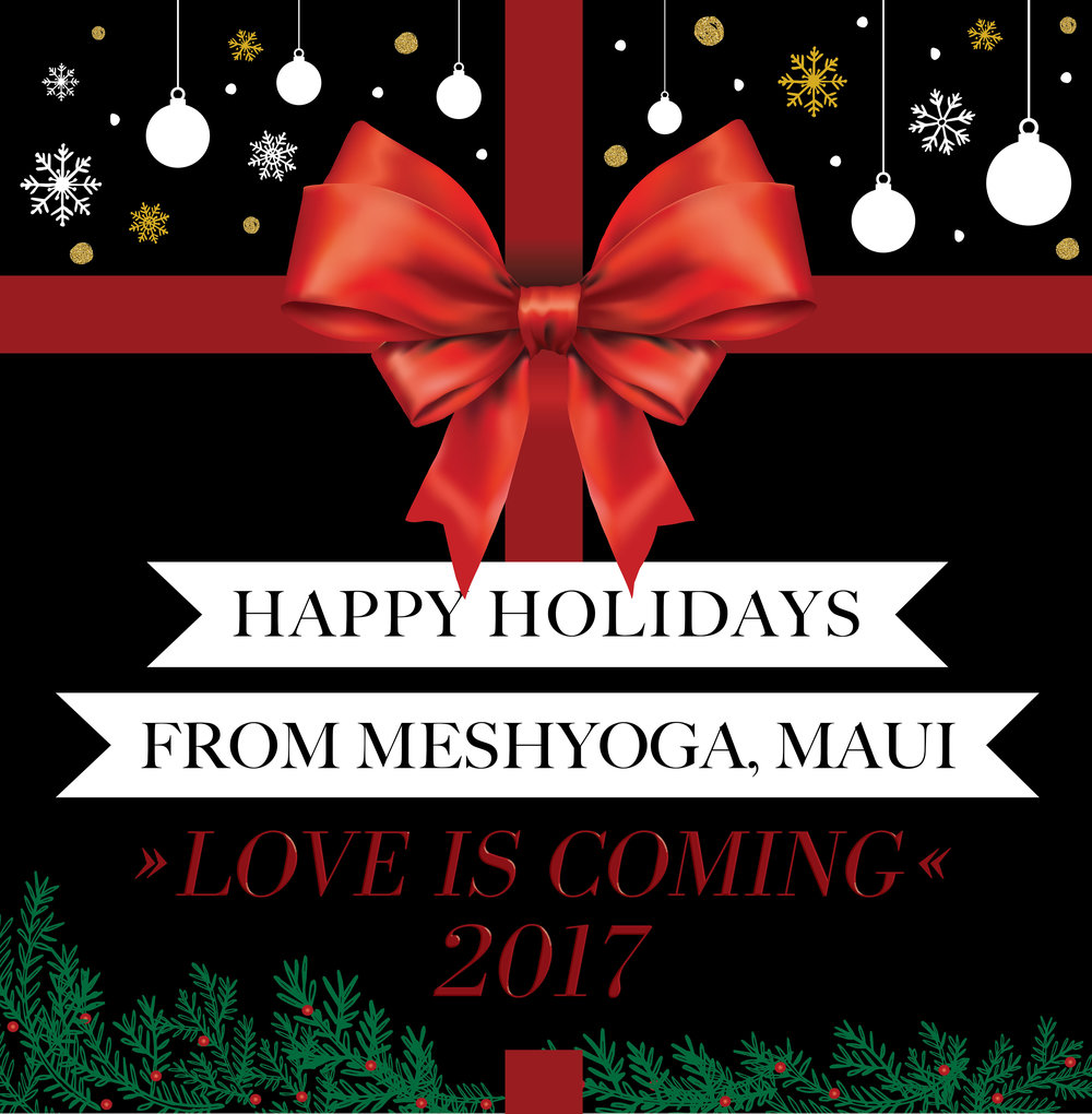 2017 MeshYoga window display