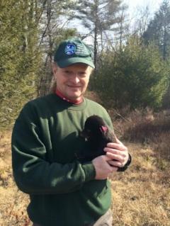 Senior Wildlife Biologist Matt Merchant