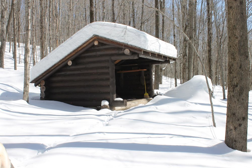 The Rochester Hollow Lean-to sits beneath deep snow this weekend!